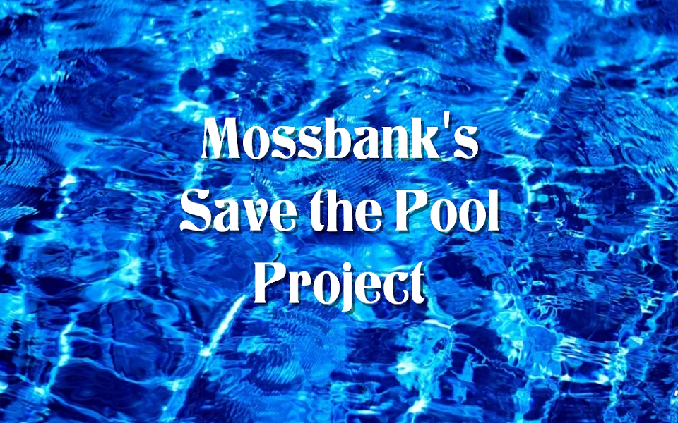 Mossbank's Pool Project